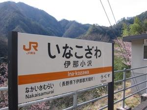 100304kannzakura1.JPG